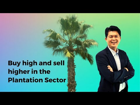 Buy high and sell higher in the Plantation Sector
