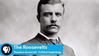Theodore Roosevelt: Political Beginnings