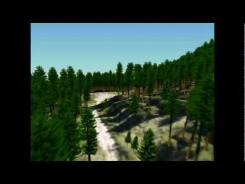 3D digital model of a real  forest from  LiDAR derived inventory data.