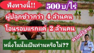 โอน2ล้านคน/ที่ใหนบ้าง?? ร่วมแสดงความคิดเห็น/ส่ส่งข่าวข้อมูลความช่วยเหลือสู่เพื่อนเกษตรกร