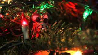 Xmas & Holidays 2015