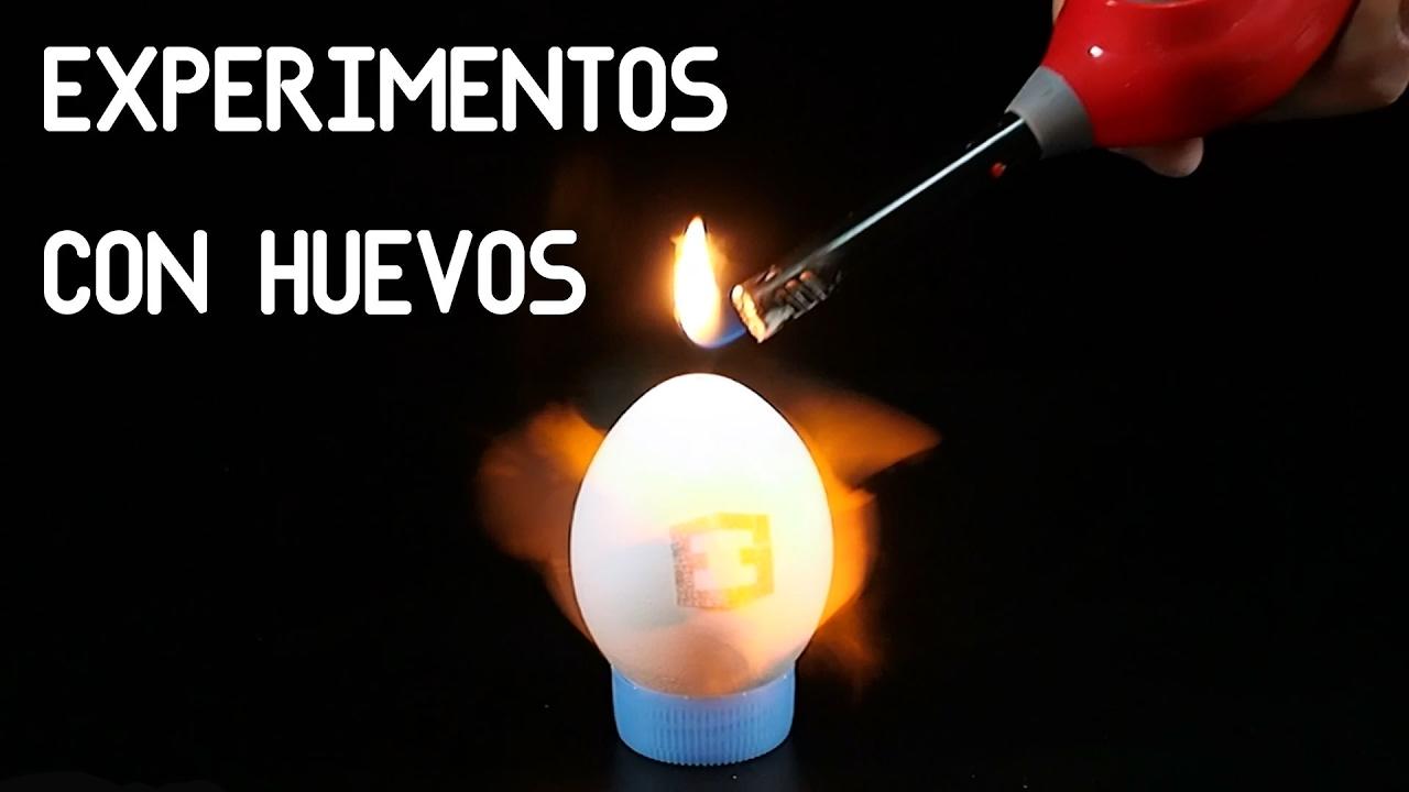 5 Experimentos caseros con Huevos