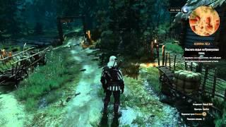 Прохождение The Witcher 3: Wild Hunt (Серия 19) [Лешачиха мертва, Ворожей]