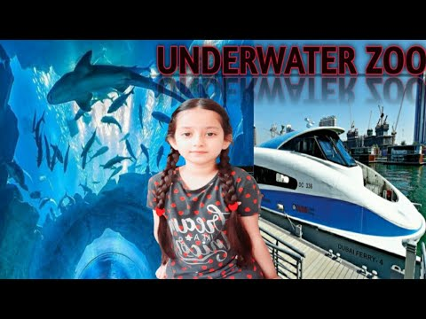 Dubai aquarium and underwater zoo  Hareem kamran