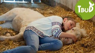 Fohlenherz (Folge 86) | Tiere bis unters Dach | SWR Kindernetz
