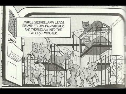 Cat Warriors Read