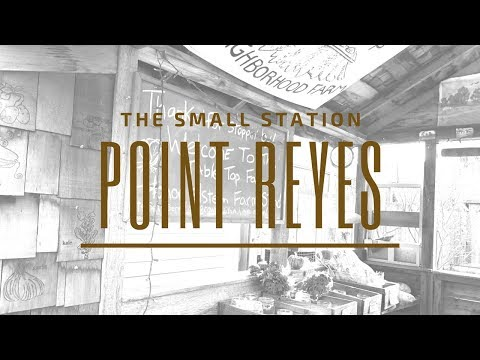 Adventure to Point Reyes Station, California