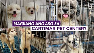 PET PRICE LIST 2020   Dogs in Cartimar and more LATEST UPDATE.