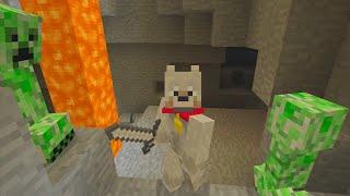 Minecraft Xbox | Diamonds or Death Challenge - Creeper Attack