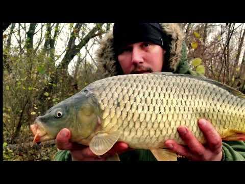 Longital Fishing Team - Úspešný Lov S Pomocou Deeper Pro+