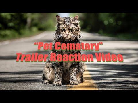 Pet Sematary 2019 Movie Trailer Reaction Video