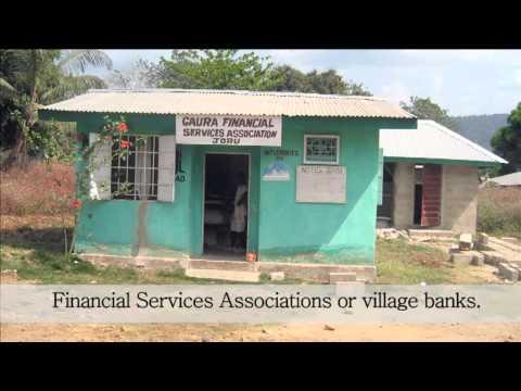 Sierra Leone: Farming as a business - Part III