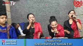 Download lagu SENADA TRIO Sidoli Pargitar Hau Nabolon Donna Boccor Seng Azwin Harefa Juntak Entertain