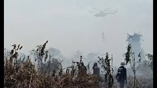 Water bombing begins as forest fire rages in Miri