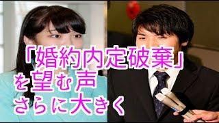 眞子さまと小室圭さん「婚約内定破棄」を望む声さらに大きく(皇室hmch) 小室圭 検索動画 29
