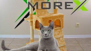 Kaķu māja nagu asināmais CAT608 beige Когтеточка Домик для кошки