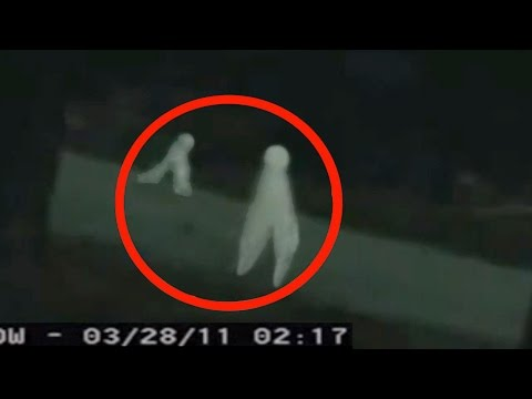 Fresno Nightcrawlers Are Terrorizing The Dark And They Re Spreading