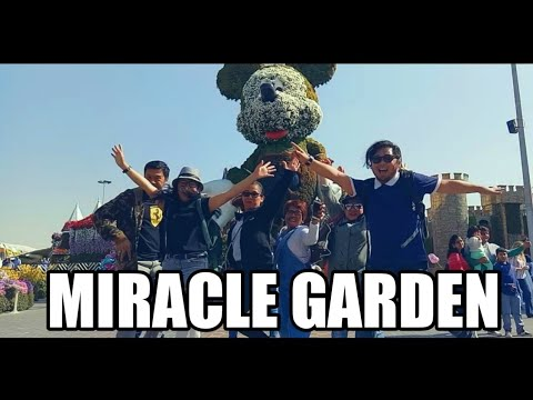 MIRACLE GARDEN 2019 (MONTAGE)