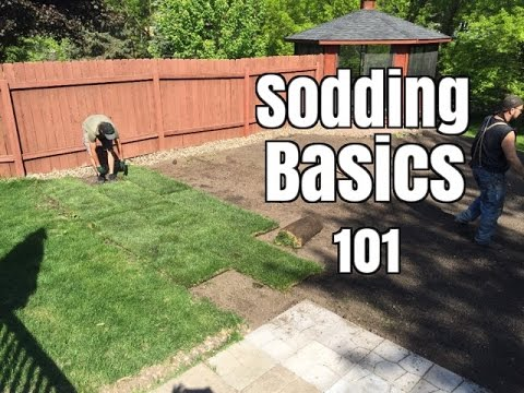 How Not To Lay Sod You