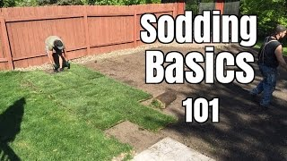 How NOT to lay Sod