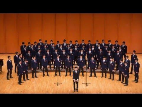Meet the Diocesan Boy's School Choir