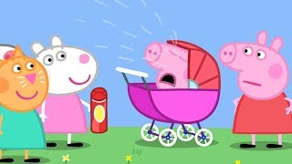 Peppa Pig en Español Episodios completos -  Bebé George | 1 Hour - Pepa la cerdita
