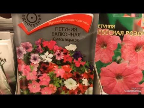 видео: ЛЕНТА. Завоз семян! Семена цветов. Январь 2019.