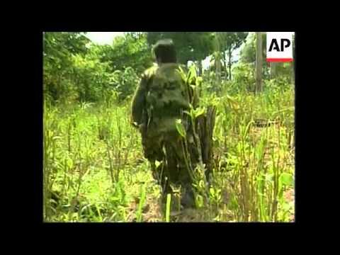 COLOMBIA: COCA PLANTS & COCAINE