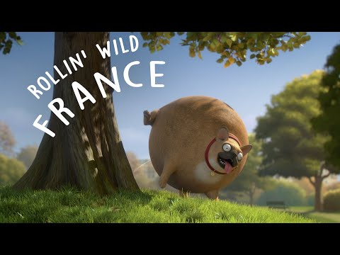Rollin' France - what if animals were round?