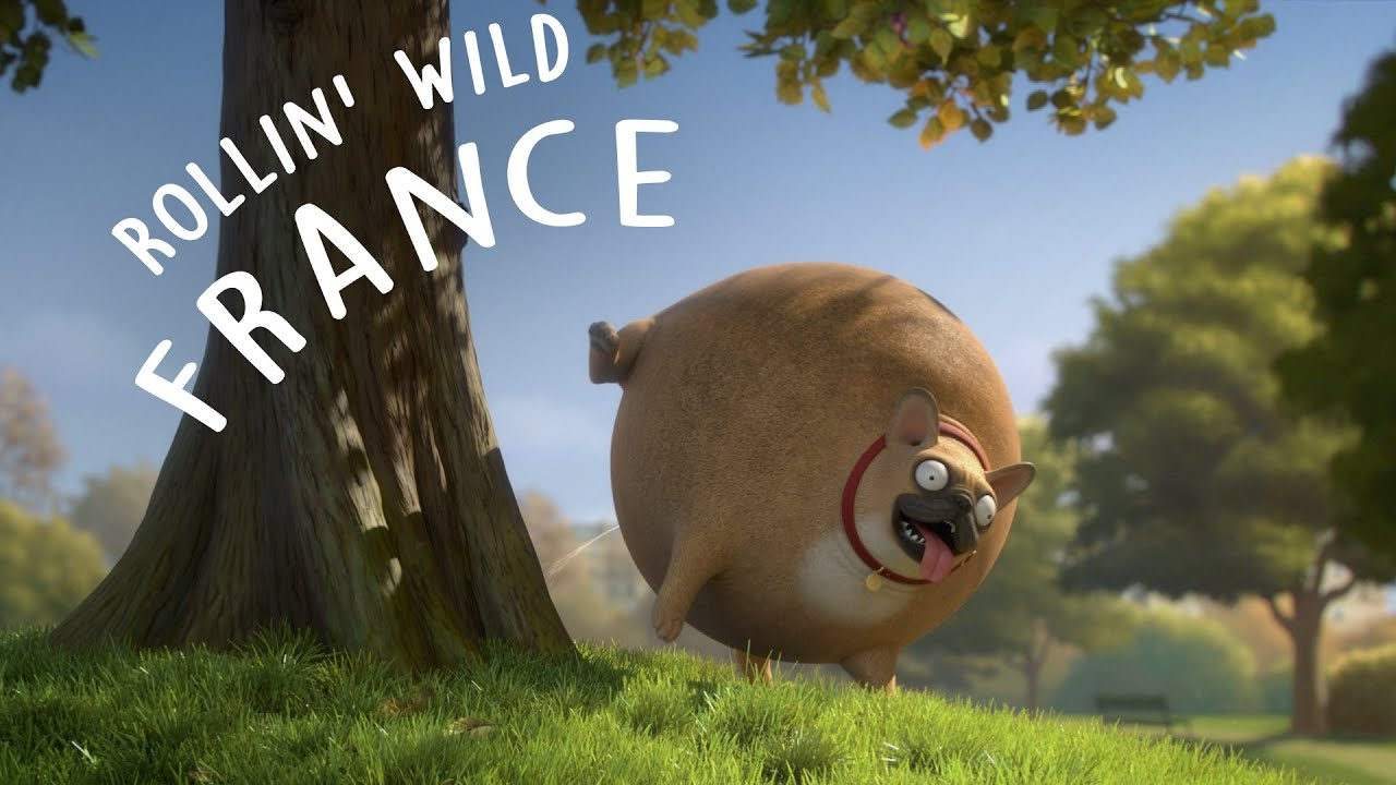 Rollin France What If Animals Were Round Youtube