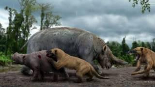 Дети детям. Мезонихии - древние хищники.