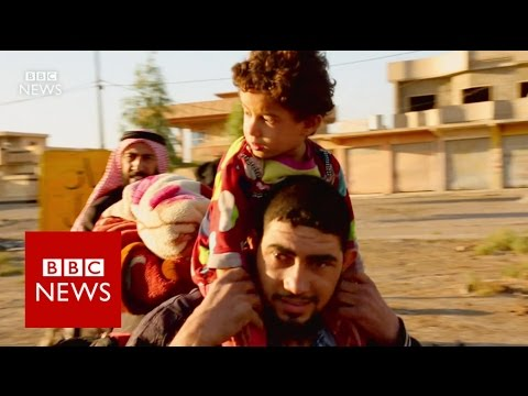 Mosul: Start of a humanitarian crisis? BBC News