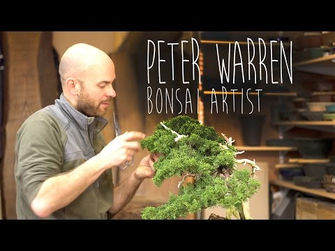 Peter Warren Bonsai artist Interview by Shinichi Adachi films [2017] [4K]