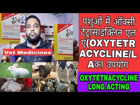 पशुओं में ऑक्सी टेट्रासाइक्लिन एल ए का उपयोग?   OXYTETRACYCLINE Dihydrate Injectable Solution/LA