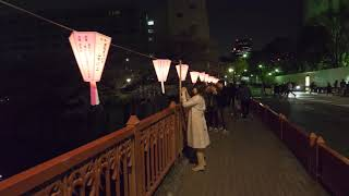 【4K】Sakura on Meguro river from end to end - part 2