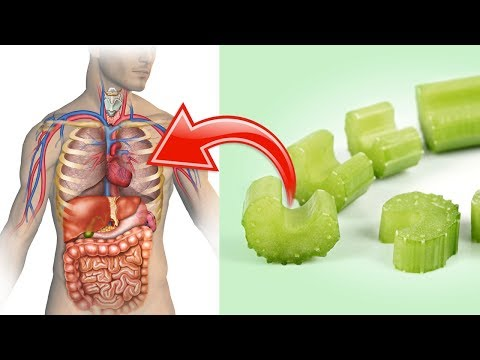 10 Surprising Reasons to Eat More Celery