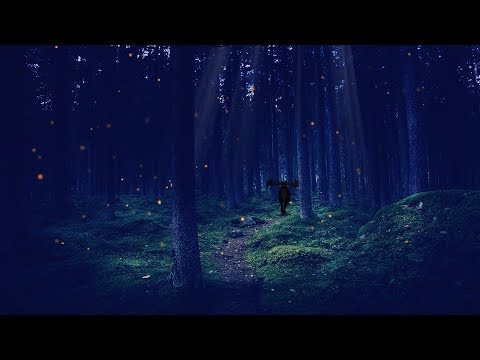 🎧 Night in the Enchanted Forest: 8 HOURS Relaxing asmr Ambience