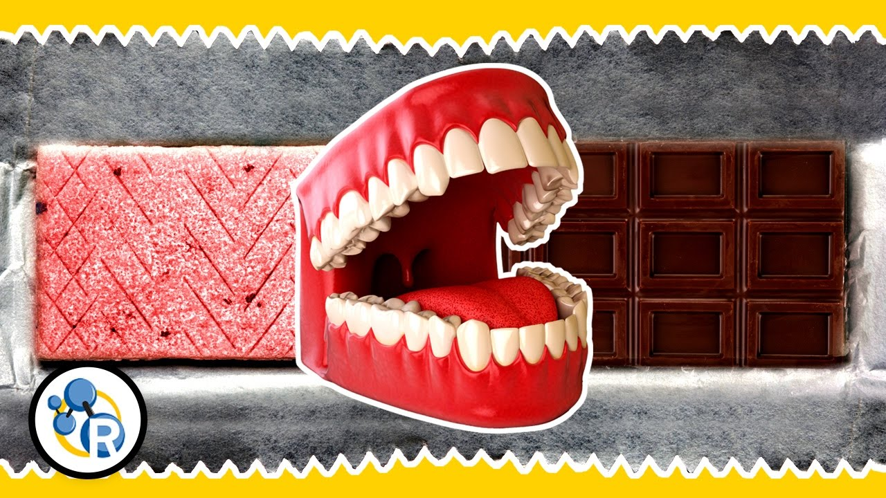 medium resolution of mouth diagram for science fair project