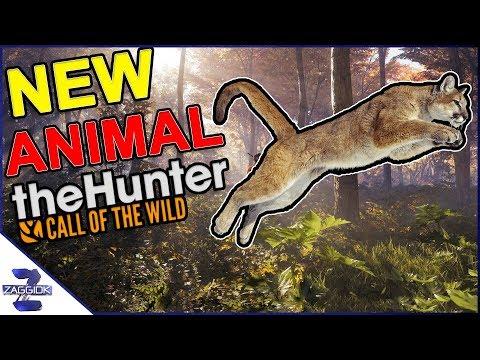 New Animal Mountain Lion Call of the Wild TheHunter