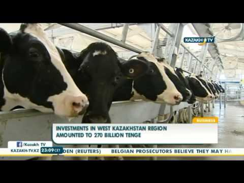 Investments in west Kazakhstan region amounted to 270 bln tenge  - Kazakh TV