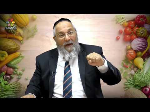 Meat & Milk: Waiting In Between - Rabbi Shlomo Cohen