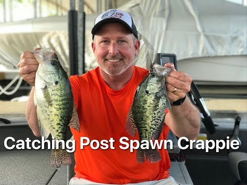 Finding And Catching Nice Post Spawn Crappie