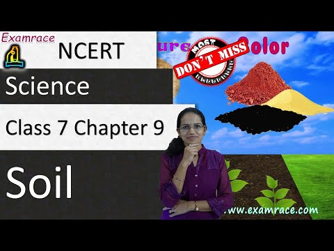 NCERT Class 7 Science Chapter 9: Soil (NSO/NSTSE)