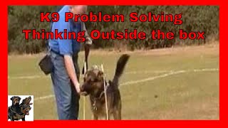 Gsd Obedience Training, Practical Problem Solving