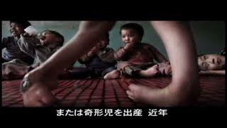 【世事関心】 二面性を持つ中国はどこへ・危機(1)ー環境破壊 thumbnail