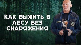 Выживание в лесу. Самоспасение без снаряжения |Наука Выживать|