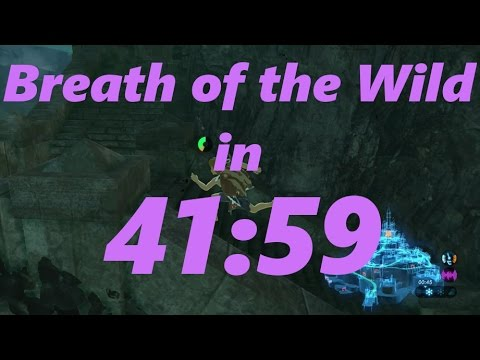 Breath of the Wild Any% Speedrun in 41:59