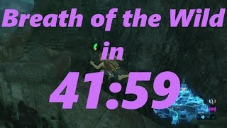 Breath of the Wild Any Speedrun in 41 59