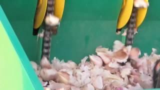 Garmach 4 rzędowa automatyczna sadzarka do czosnku, cebuli i bobu (zawieszana do ciągnika)