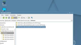 установка VipNet Client 4.3 for Linux в ОС Astra Linux Common Edition